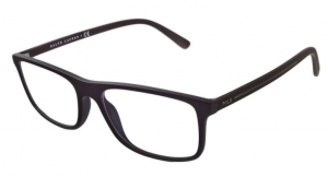 Okulary Polo Ralph Lauren PH 2197 5284